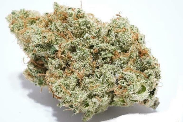 The City.Delivery-RICHMOND AREA INDOOR FRESH 7G $50 24-32%THC
