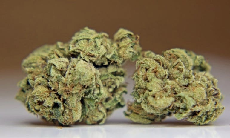 Presidential Collective - Thousand Oaks 14GS FOR $110 PLATINUM KUSH