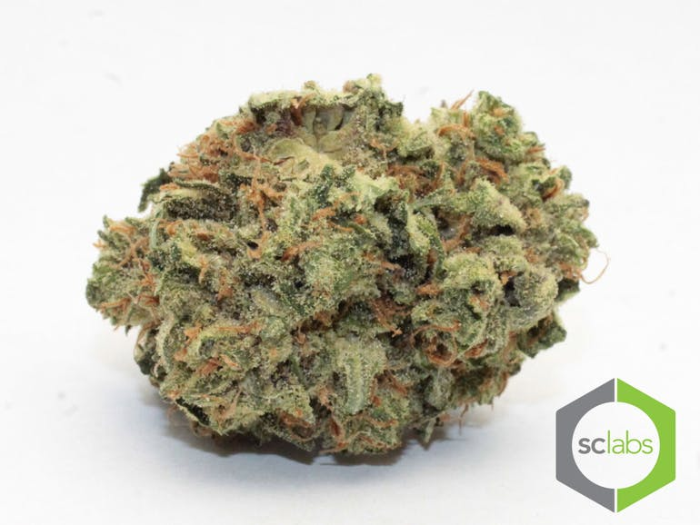 Urban Treez - Adult Use Buy One 1/8th Get One 25% OFF!