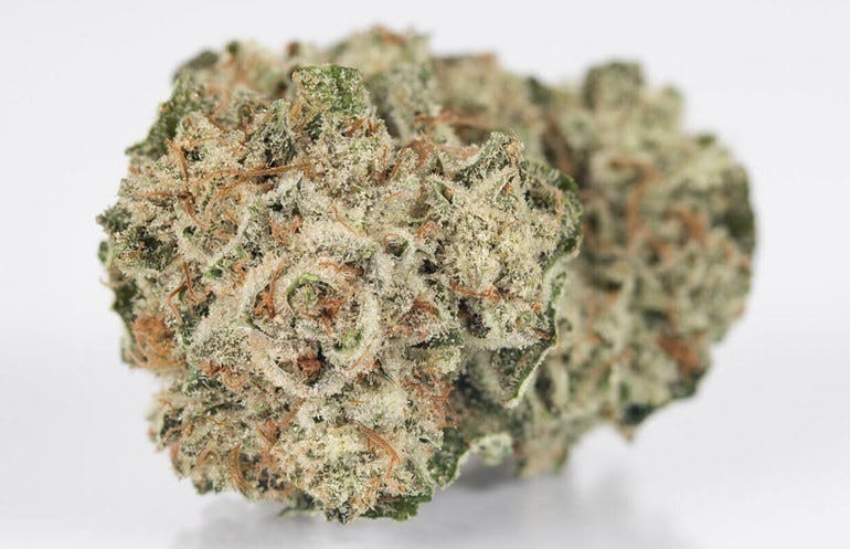 Presidential Collective - Oxnard ALL STRAINS 1/4 $55 , 1/2 $90