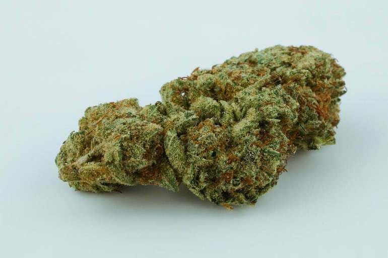 The Great Meds CRAZY GLUE PR $89 1/2OZ-$159 OZ