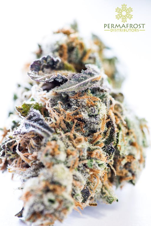 Permafrost Distributors Top Shelf Tuesday!