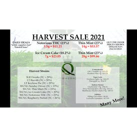 Queen of Dragons Express HARVEST SALE!