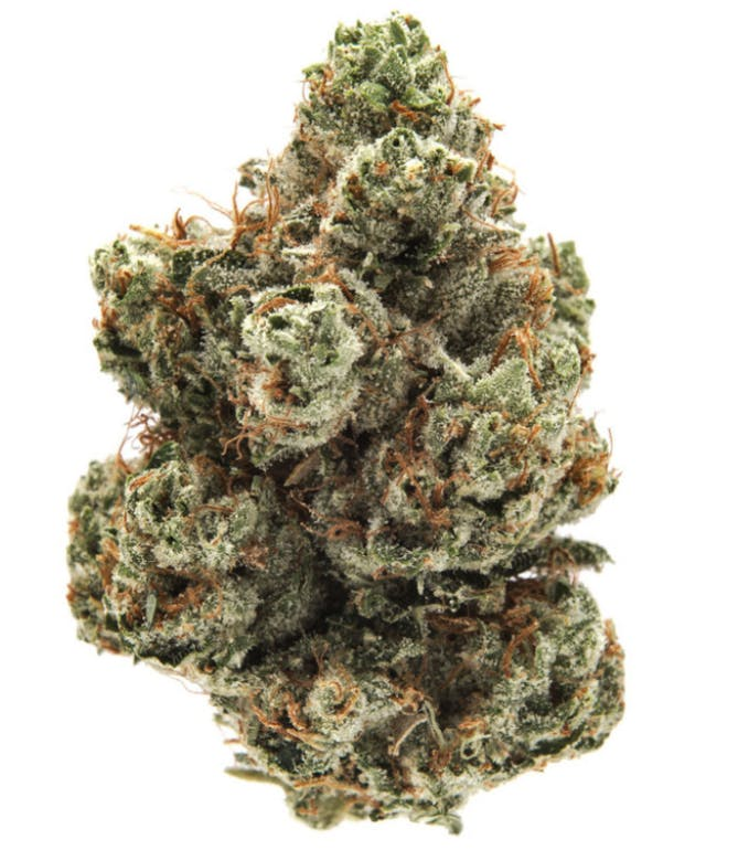 Green Tree Remedy - West Los Angeles ANY 8G @ $60