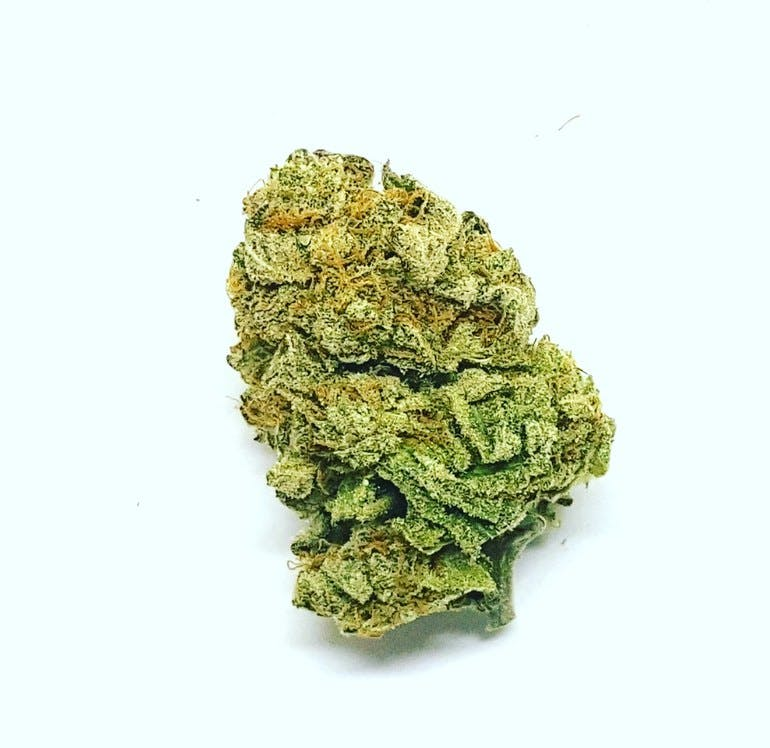 Weed Now 8 G for $50: Any @The_Weed_Plug