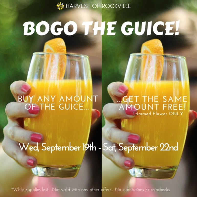 Harvest of Rockville The Guice BOGO
