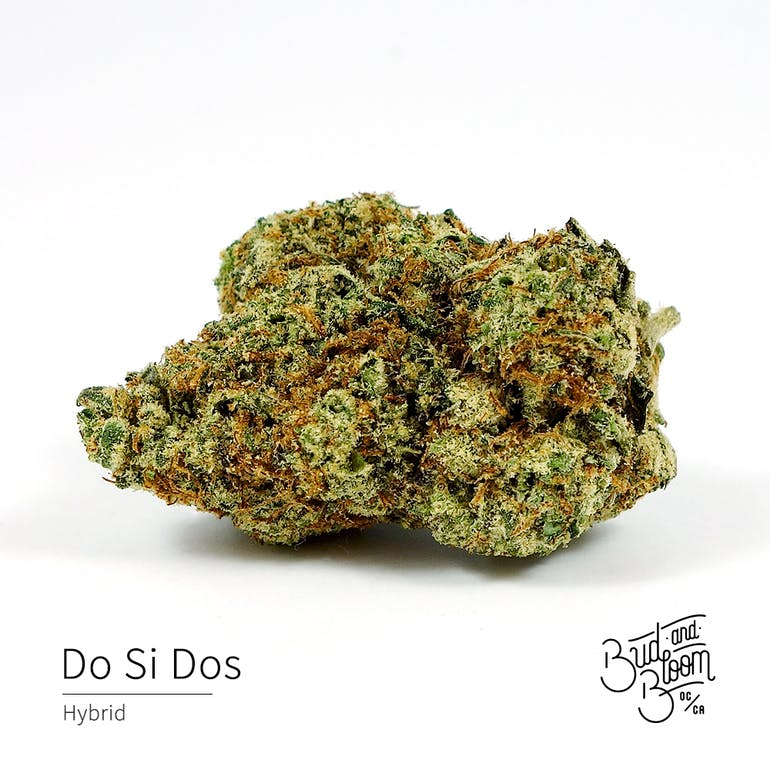 Bud and Bloom 20% OFF FLOWER!!