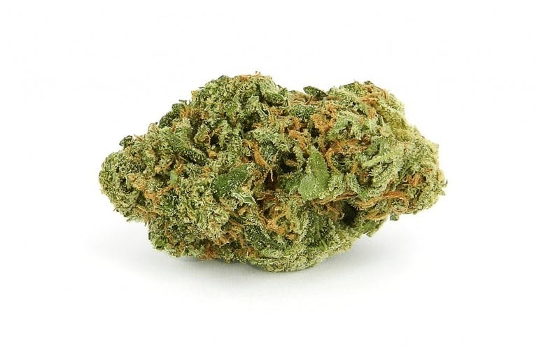 Elite Wellness - Bay City $79 Ounces