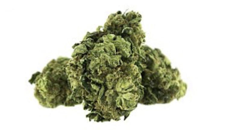 Urban Flavours Delivery - Tracy 1/8 oz. Sour Diesel $15