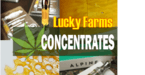 5099578 concentrate image for website 200 x 200