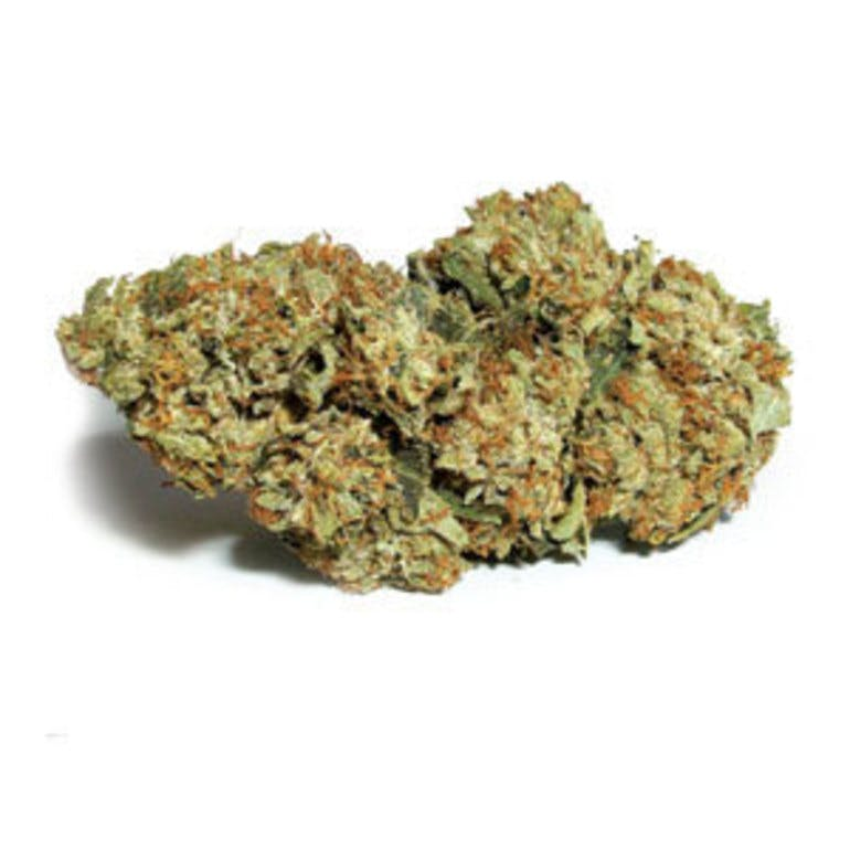 Daily Dose Delivery 6G 1/8 ONLY $50 TOP SHELF