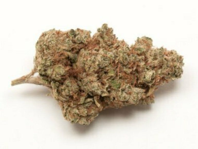 The Great Meds INDOOR PRIVATE R. 10G for $70.