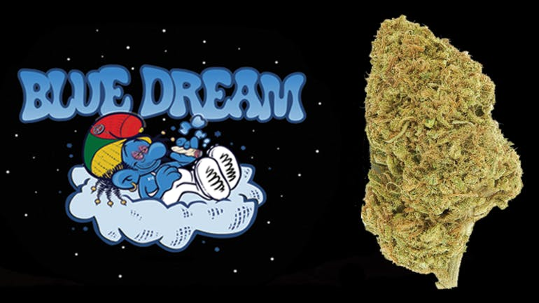 Uplift Blue Dream - 10G's Special $50