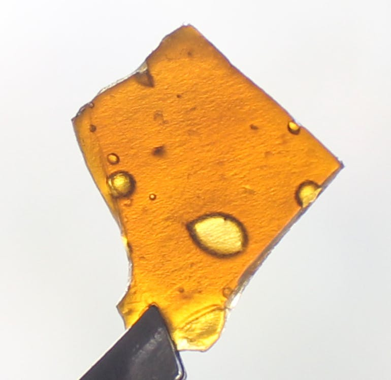 PROHIBITION HERB - REC $5 off 1g of fire shelf hash!