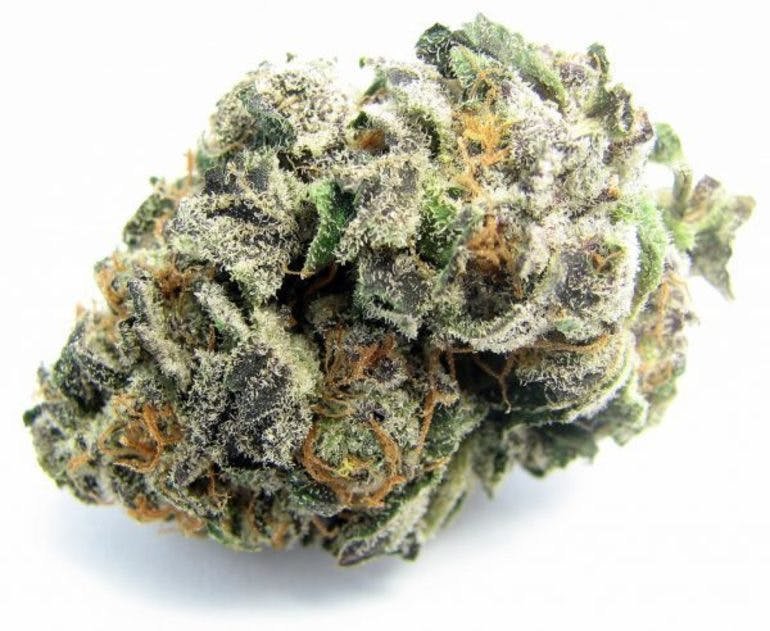 This Budds 4 U 10G of Dos-Si_Dos $55