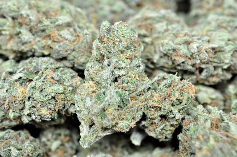 Green Frog $160 Ounces