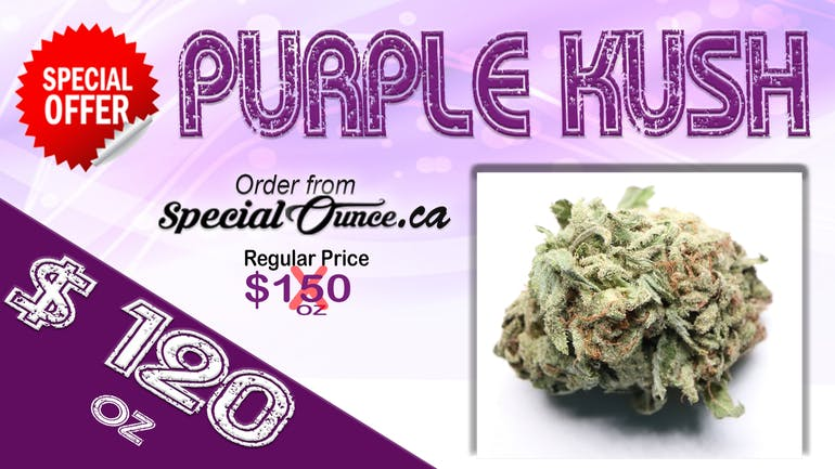 SpecialOunce.ca - 2 Hr Delivery Purple Kush 120/oz-2hour deliver