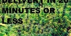 2762062_fields_of_weed_wp_by_gd_gfx