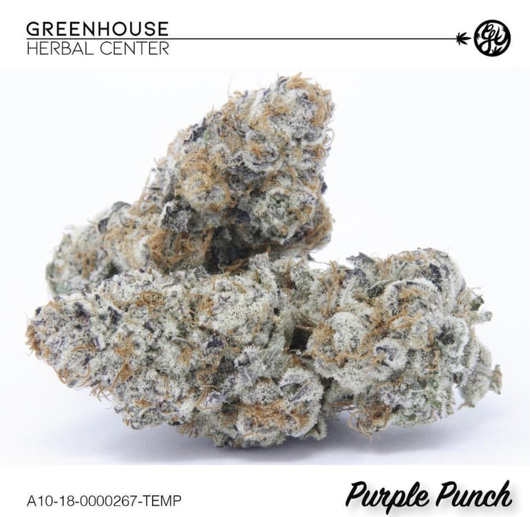 Greenhouse Herbal Center, LLC PURPLE PUNCH 14G/$90 TAX INCLUDE