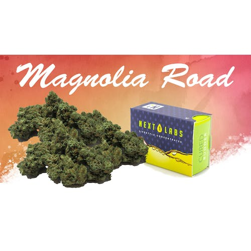 Magnolia Road Cannabis Co. - Medical 1g next1 + 1/4 Gold = 55.33*