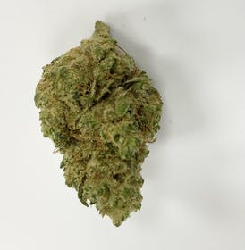 Flower | Space Cream (I) | 3.5g Prepacked Bud