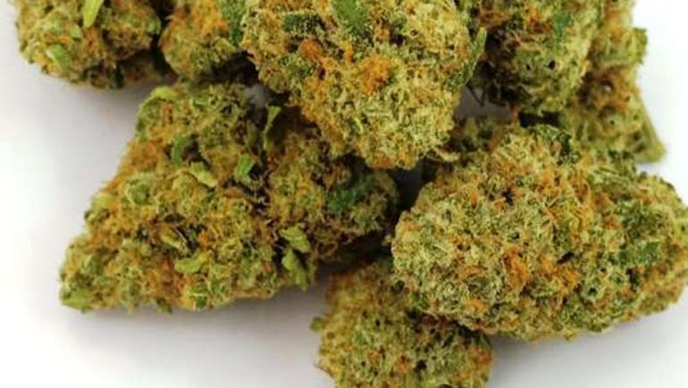 VHHC Delivery - Fairfield EUPHORIA 1/8 $29.99+tax