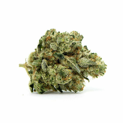 Lavish Buds Delivery GORILLA GLUE #4 7g $70 /10G 100$