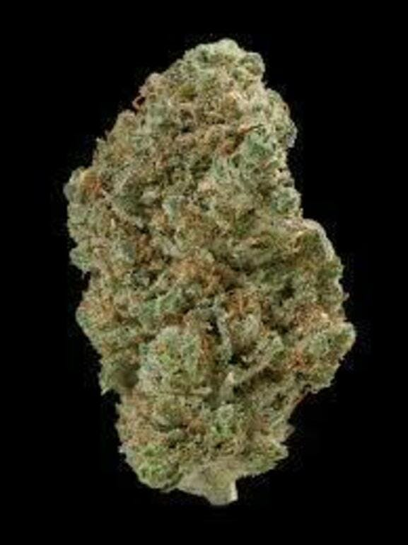 Quality Control Meds 10 Grams of Exotic - $90!