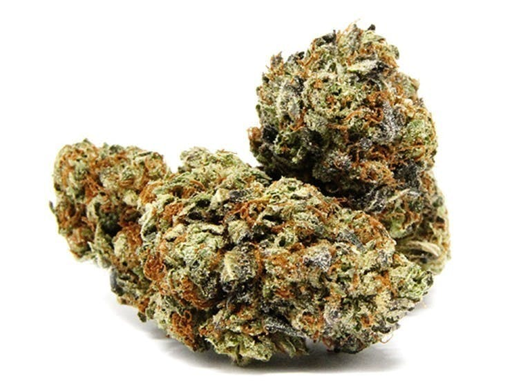 Fast Buds Organic 20% OFF THE ENTIRE