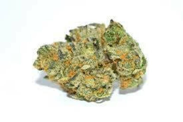 VHHC Delivery GSC 1/8 $25+tax