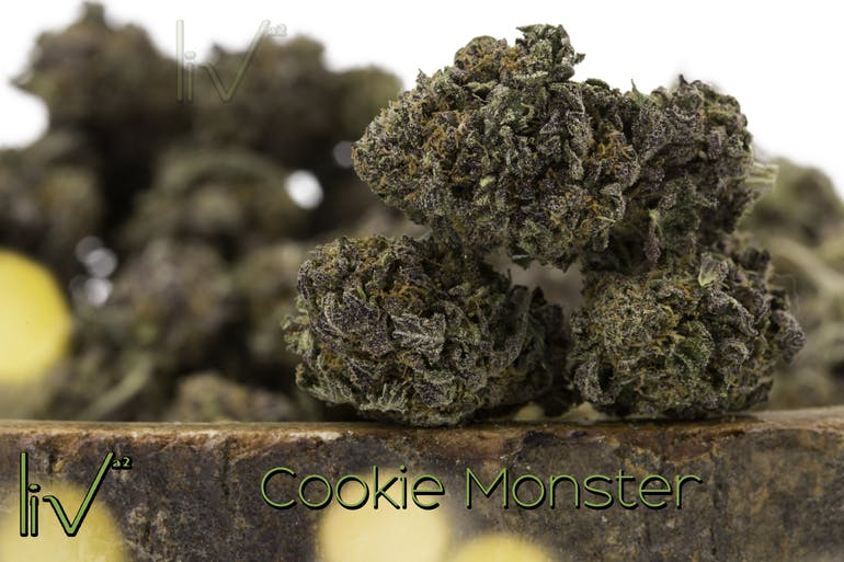Indica - Cookie Monster