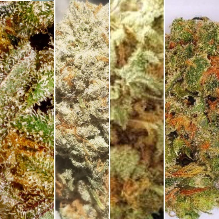 MJ 13 Elevated ANY! 4 Strains for $100 1/8 each