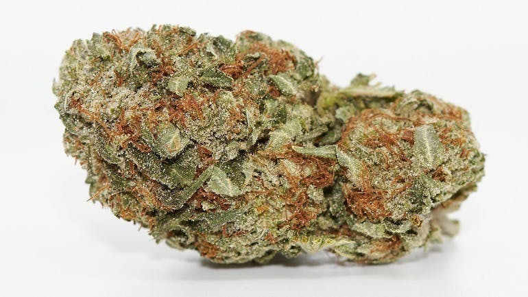 Toke City Online Free 7gs (AAA+) on first order!