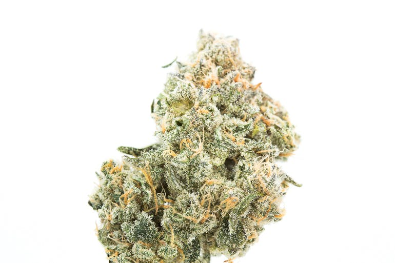 Lindzy's Med Supply Station High Grade Exotic Cannabis $12g