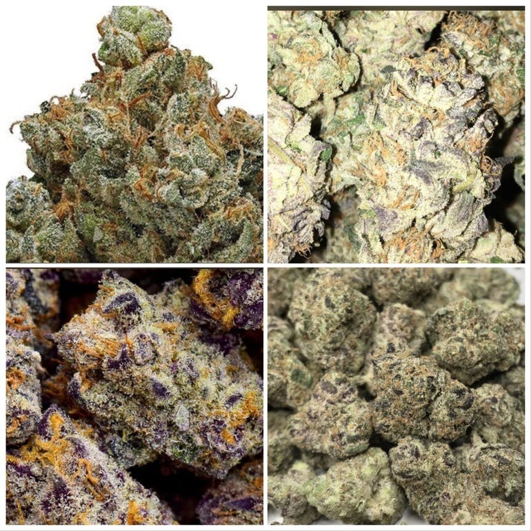 Calico Buds RX FOUR EXOTIC 8ths FOR $105!