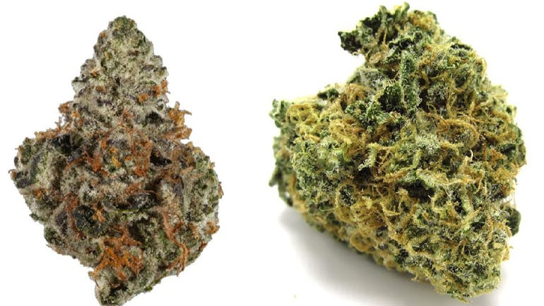 Calico Buds RX ANY TOP SHELF 1/2 OUNCE FOR $80.