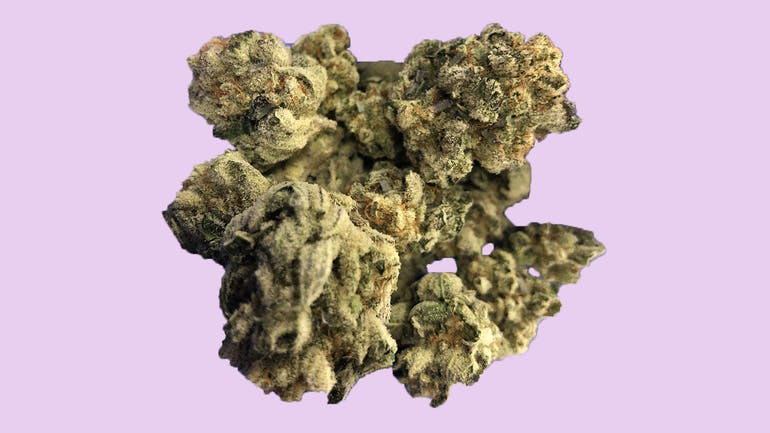 Bloom Medicinals Cannabis Dispensary Purchase $400 Get 20% OFF!