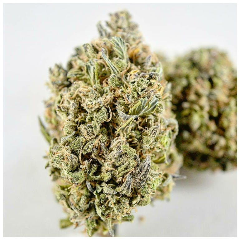 Platinum Reserve Collective - Bay Area 🔥Greenhouse Ounce $105🔥