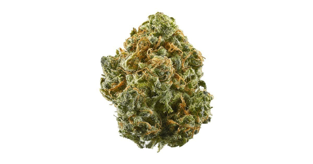 Blue Dream 19.76% THC | Stone Age Farmacy