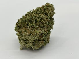 Bruce Banner by Night Owl