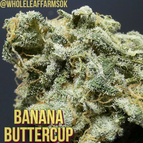 Banana Buttercup - $30 Eighth OTD