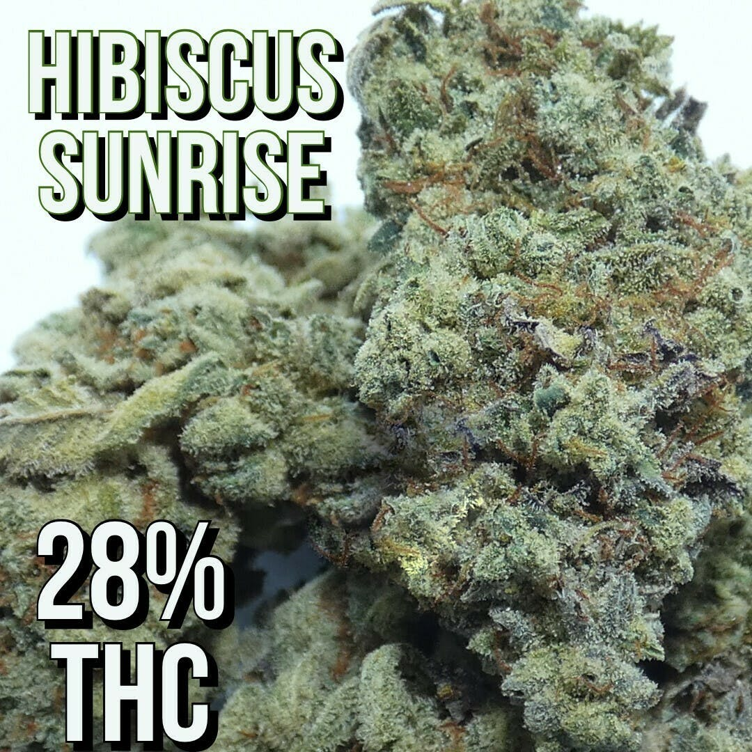 Hibiscus Sunrise - $46 Eighth OTD