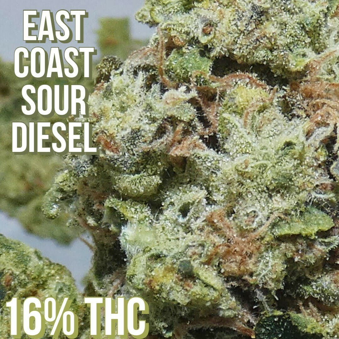 East Coast Sour Diesel - $43 Eighth OTD