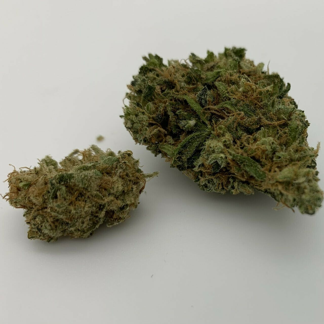 Dutch Treat 1:1 - $20 Eighth OTD