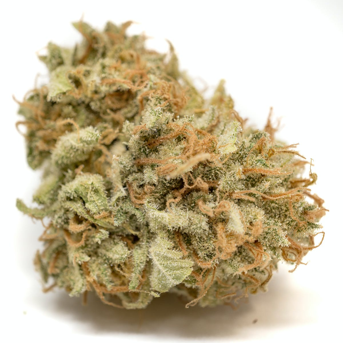 Funky Farms | Featured Products & Details | Weedmaps