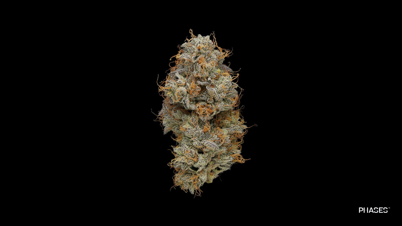 High Frequency (Sativa)