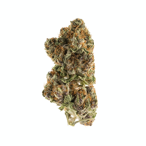 Mimosa - Cannabis Strain Information | Weedmaps