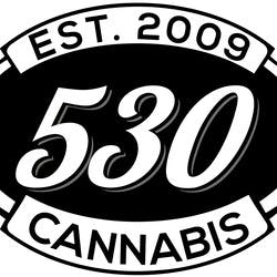 530 COLLECTIVE