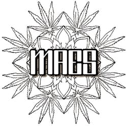 maes85